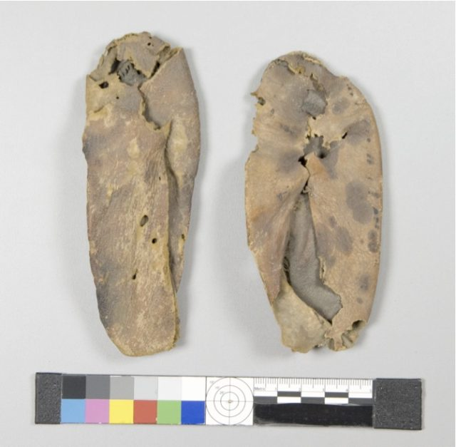 Pair of Child's Slippers