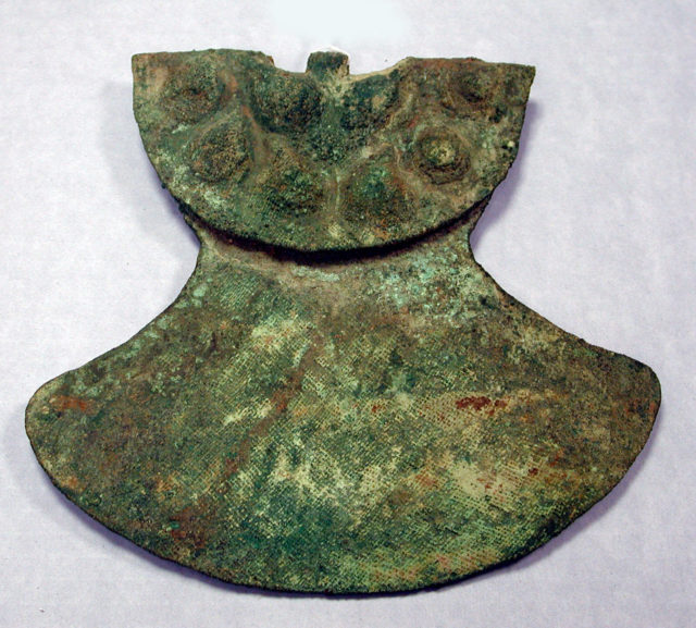 Copper Armour Back