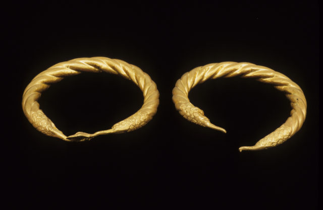 Spirally twisted tubular armlet with one goose-head terminal preserved