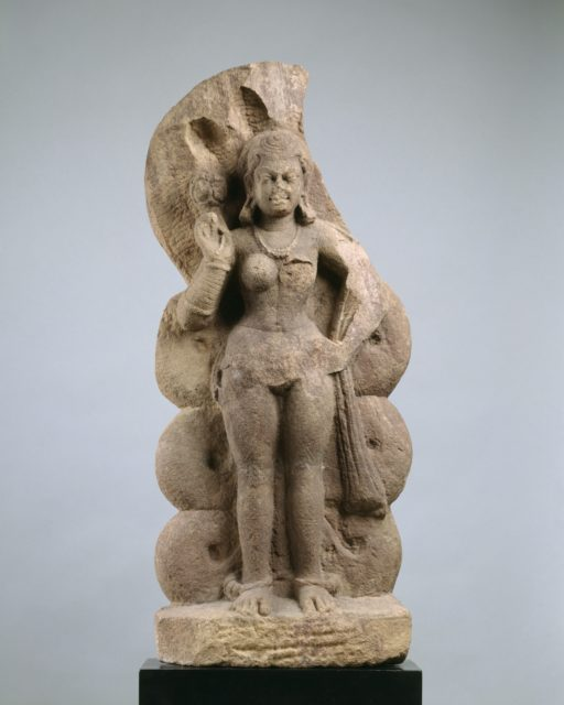 Nagini (Serpent Queen or Consort of Nagaraja)