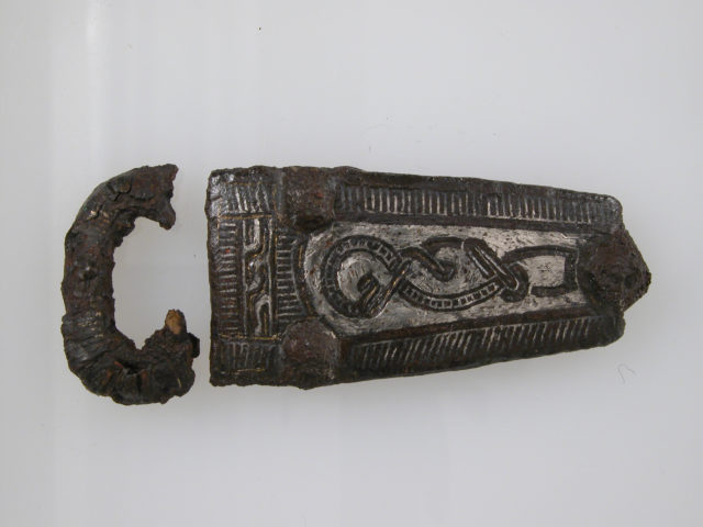 Plate and Loop of a Belt Buckle