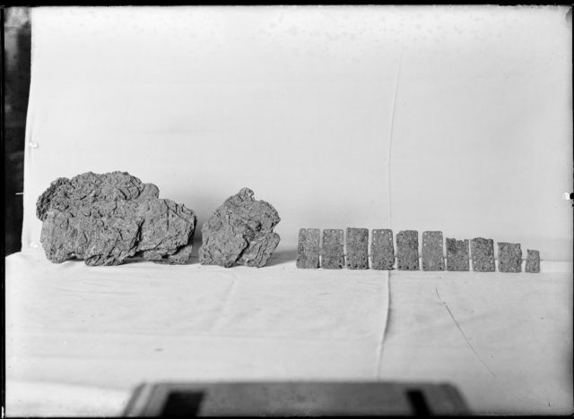 Armor Fragments of Scales from a Cuirass