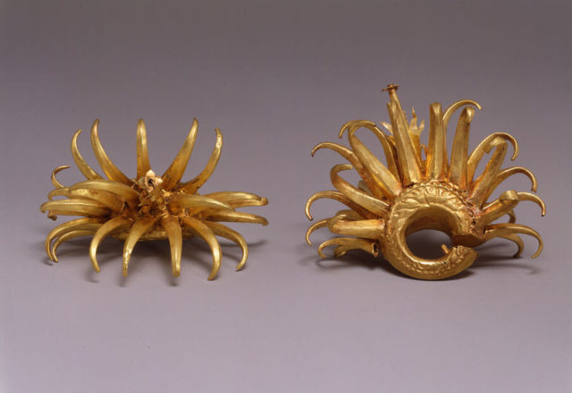 Circular Ear Ornaments with Curving Appendages