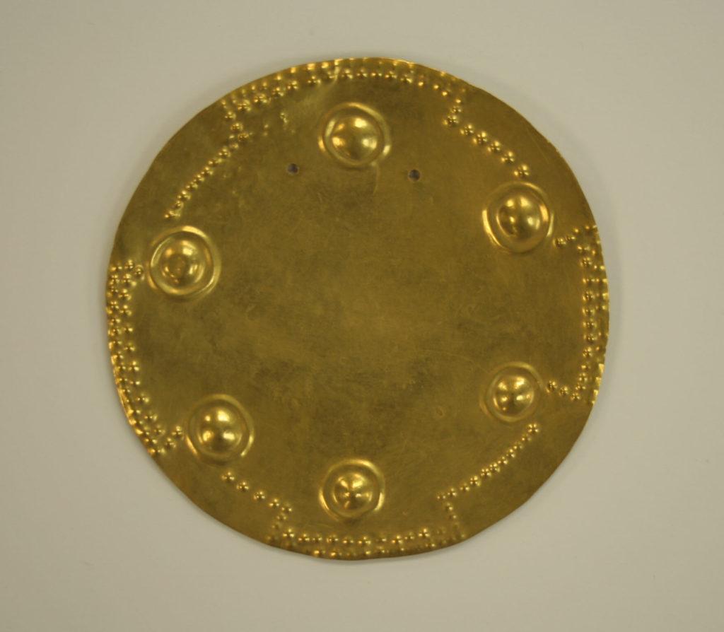 Pectoral Disk
