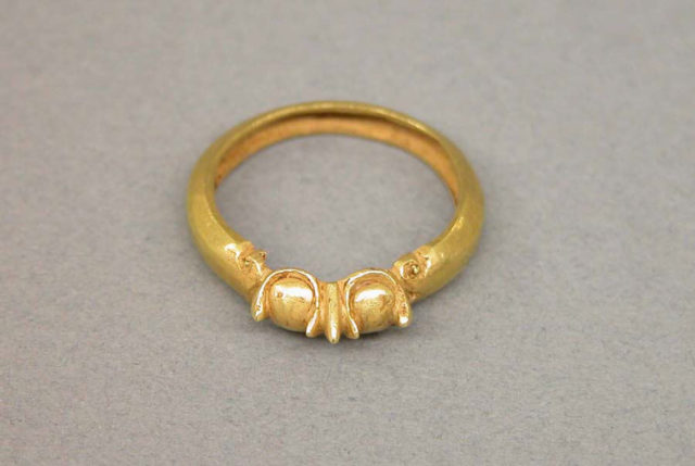Ring with Double Vegetal Motifs