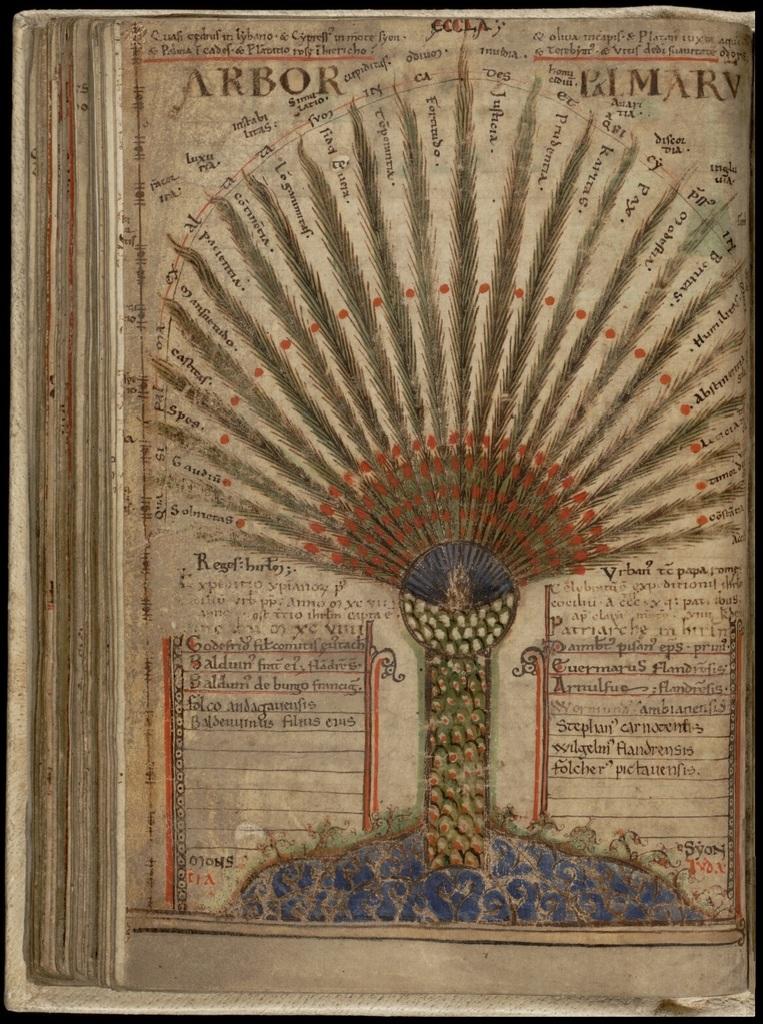 Liber Floridus - Arbor Palmaru