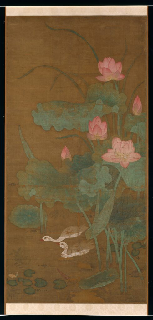 Lotus and waterbirds