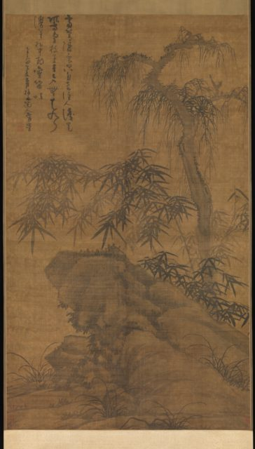 Bamboo, old tree, and rock