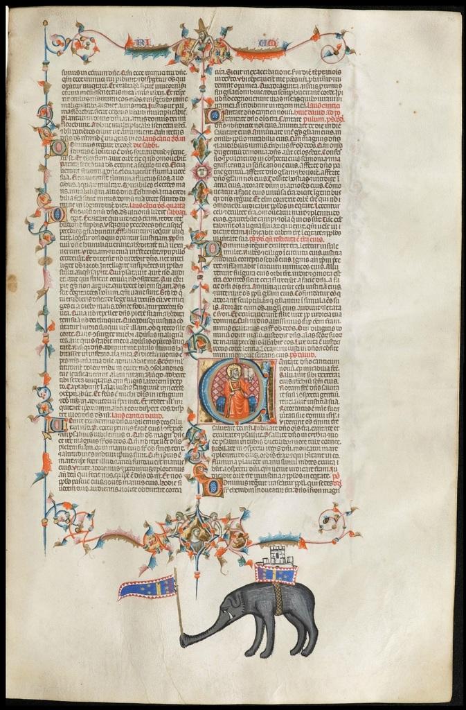 Anjou 146r