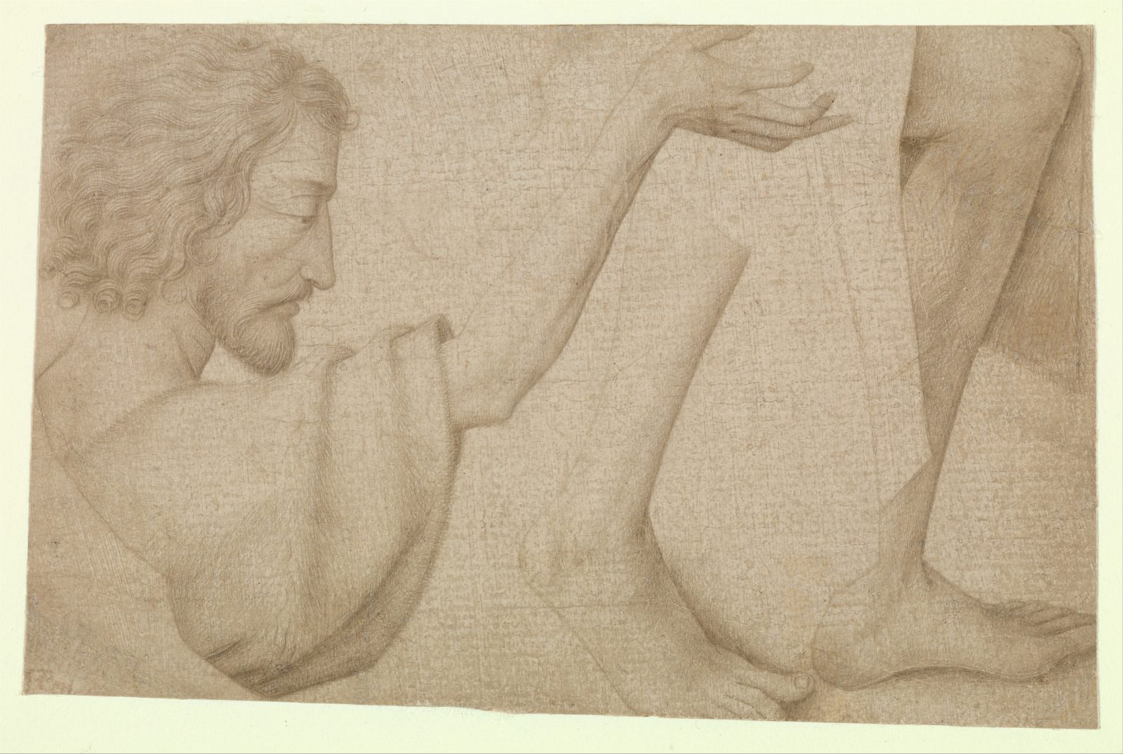 Studies of Saint John the Baptist