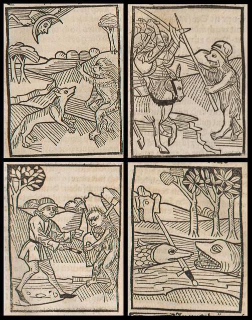 Das Buch der Natürlichen Weisheit (1490)