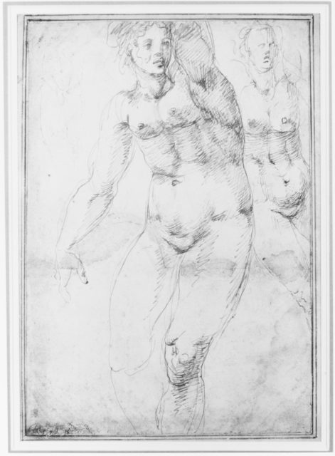 Studies for a Nude Woman Seen from the Front (recto); Four Standing Male Nudes, Venus, and Cupid (verso)
