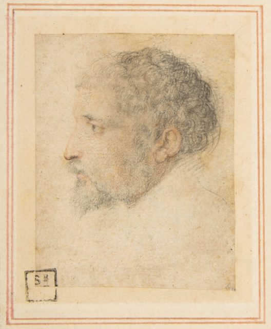 Head of man in Profile to Left