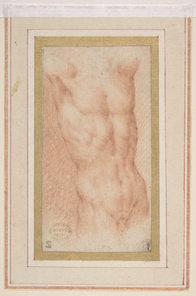 Male Nude Torso with Raised Arms