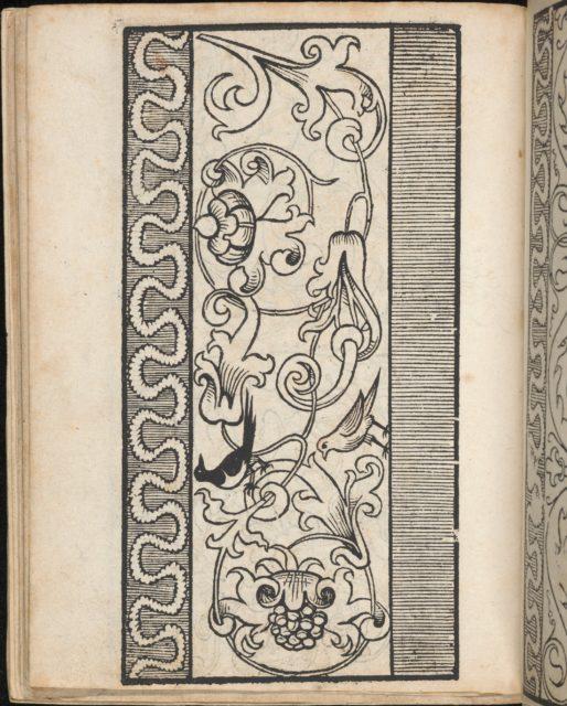Ein new Modelbuch..., page 15 (verso)
