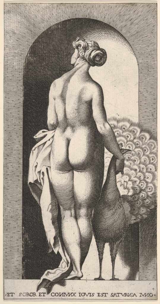 Plate 4: Juno standing in a niche, viewed from behind, stroking a peacock to her right, from a series of mythological gods and goddesses