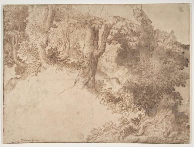 Woodland Scene with Light Sketch of a Madonna and Child