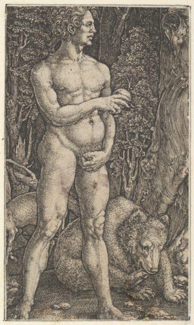 Adam with a Bear