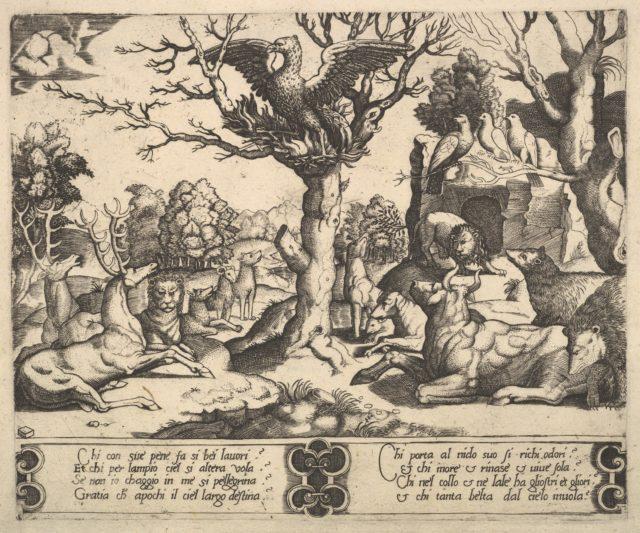 A phoenix sat atop a tree, wings open, an assortment of animals below