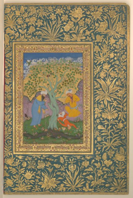 """""""A Youth Fallen From a Tree"""", Folio from the Shah Jahan Album"""