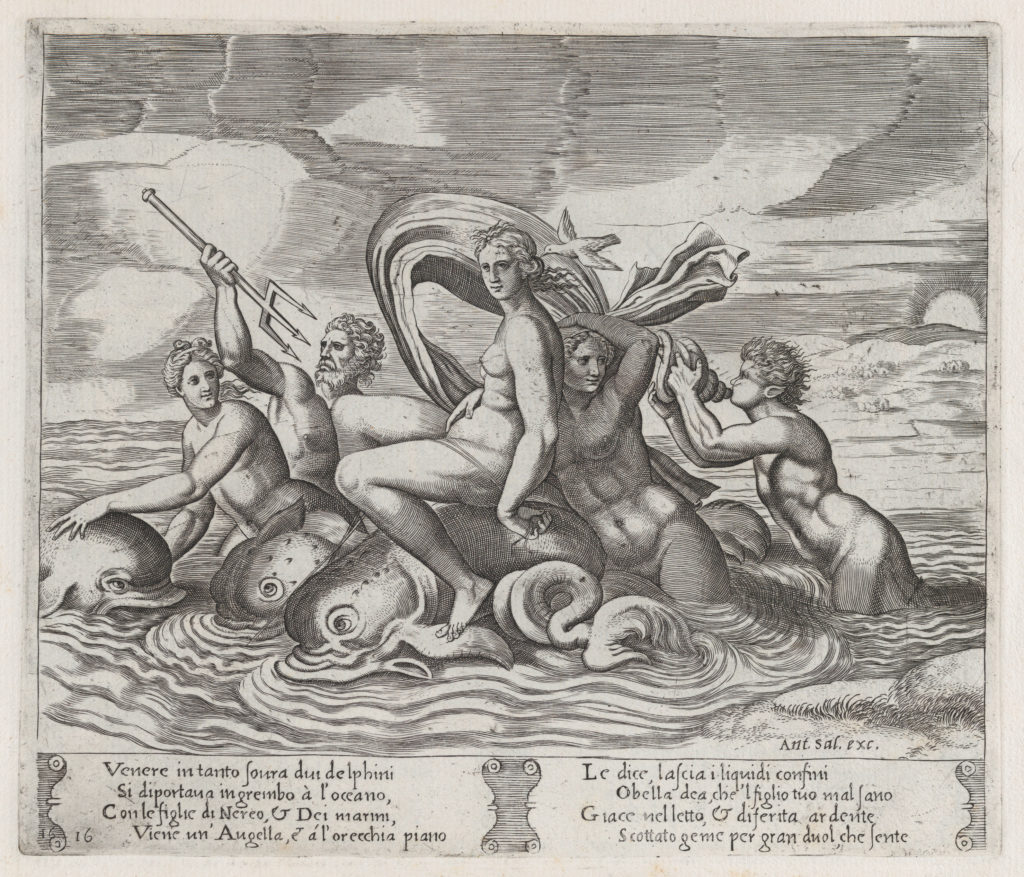 Plate 16: A white bird tells Psyche of Cupid's illness, as she rides dolphins on the sea accompanied by tritons and nereids, from the Story of Cupid and Psyche as told by Apuleius