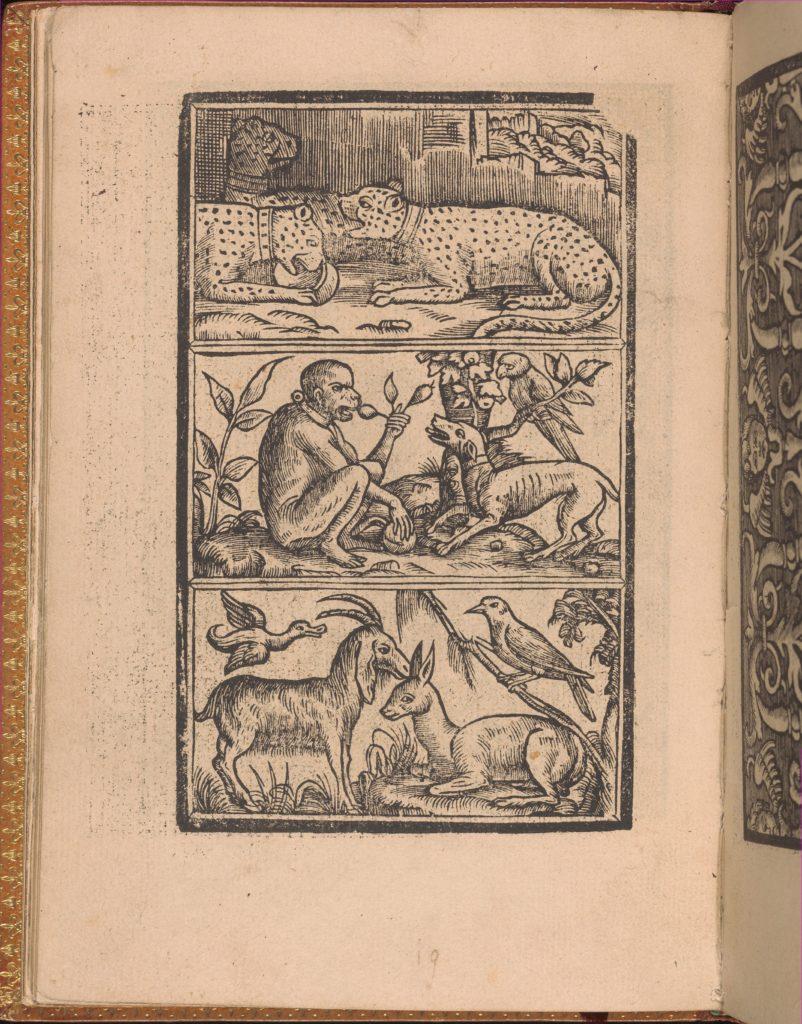 Convivio delle Belle Donne, page 11 (verso)