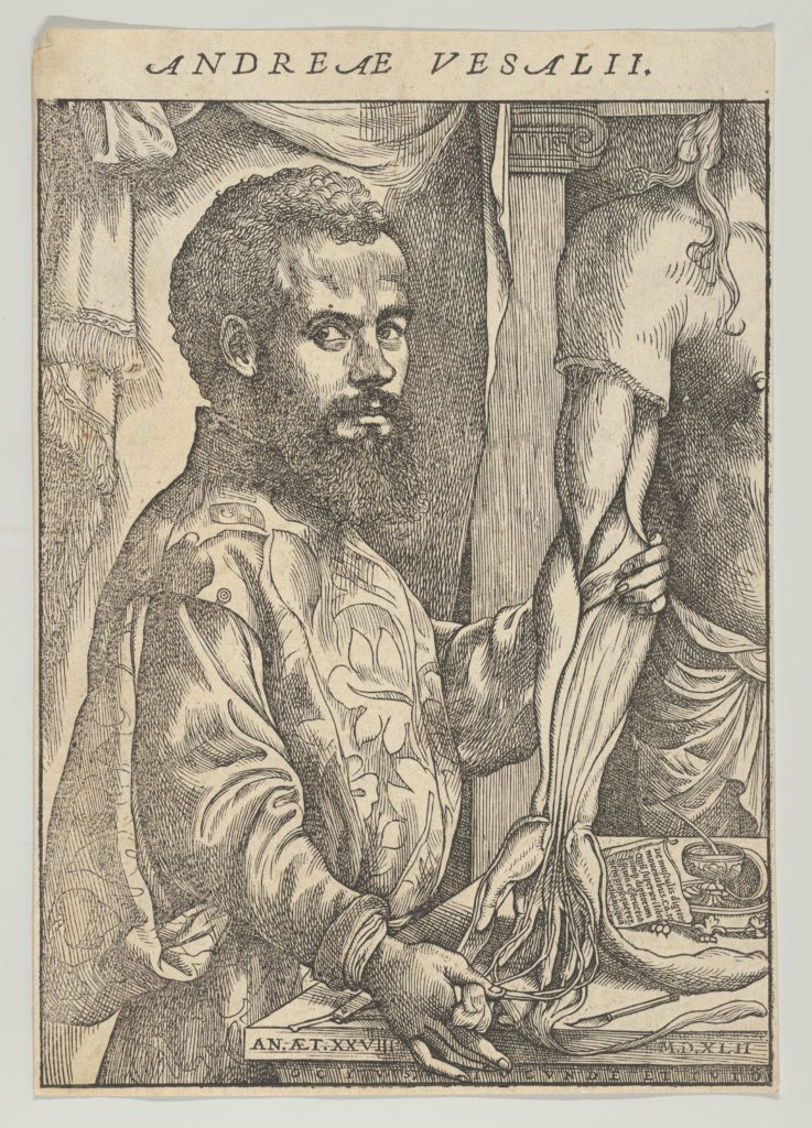 Portrait of Andreas Vesalius, half-length in profile standing in front of a table dissecting the arm of a body; frontispiece to Andreas Vesalius 'De humani corporis fabrica libri septem'
