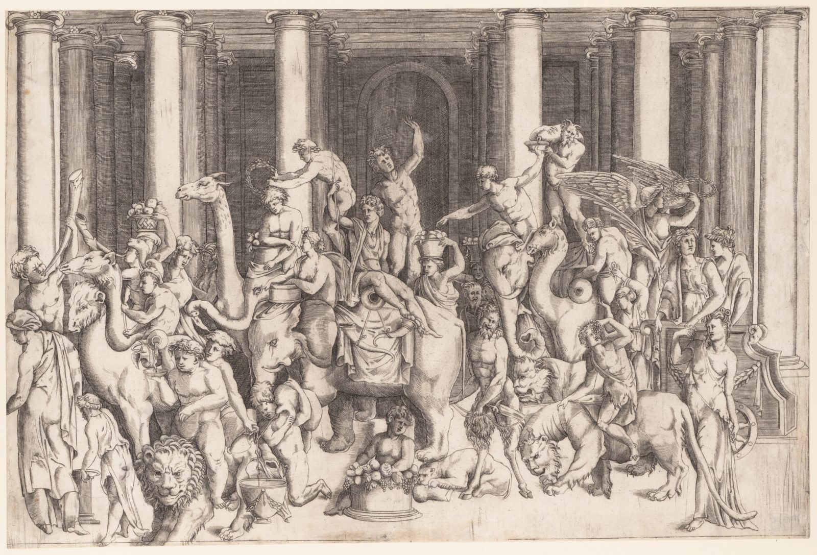 The Indian Triumph of Bacchus