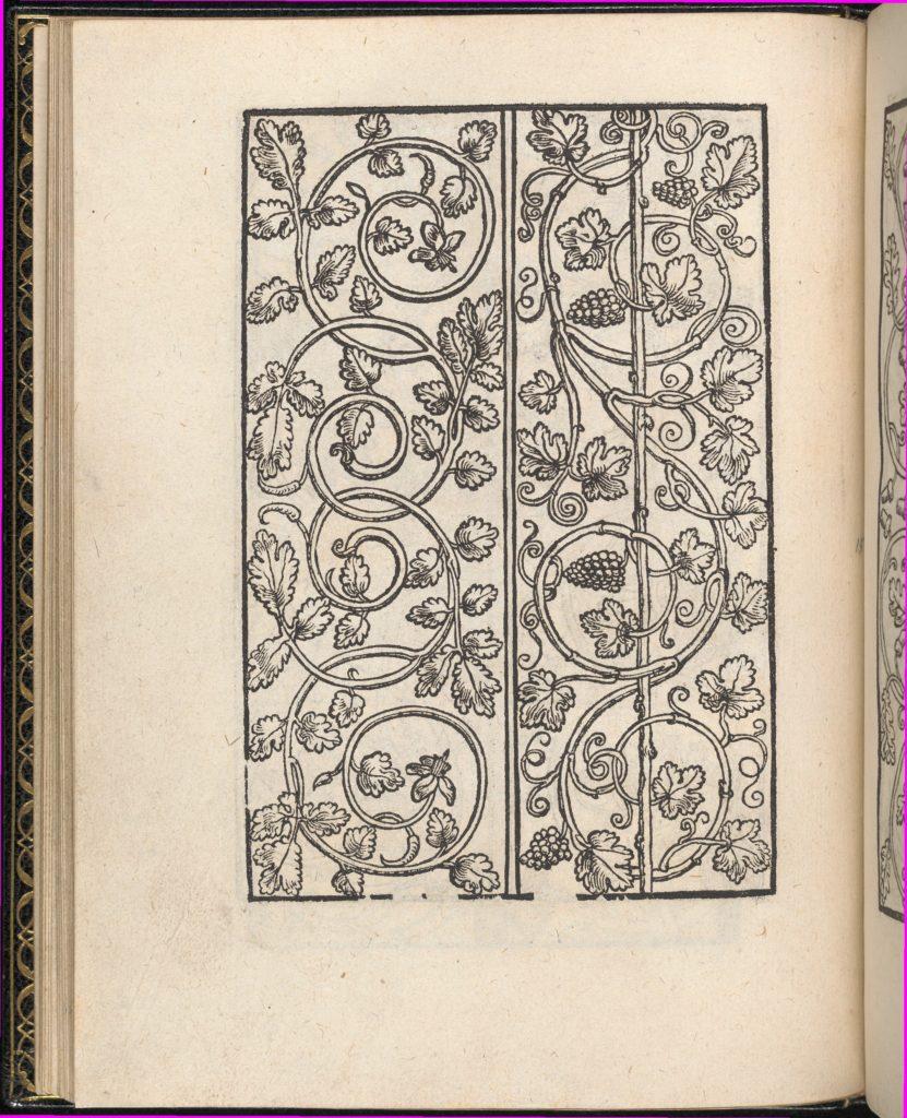 Page from Ein new kunstlich Modelbuch...(Page 15v)