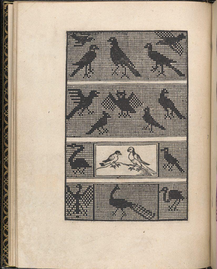 Page from Ein new kunstlich Modelbuch...(Page 7v)