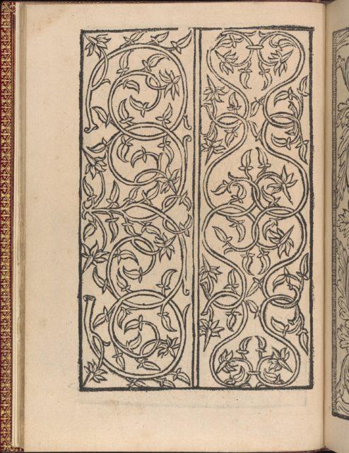 Modelbuch new, aller Art, Nehens und Stickens (page 11v)