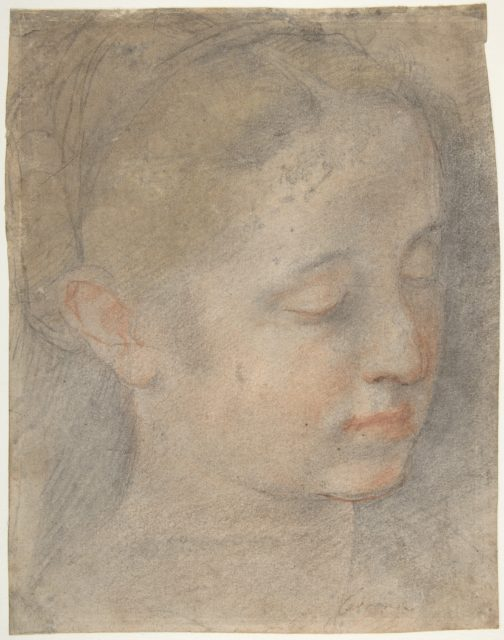 Head of a Young Woman Looking to Lower Right