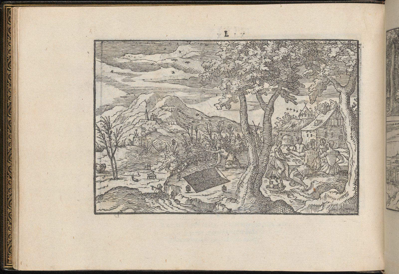 La Vera Perfettione del Disegno di varie sorti di recami, page 25 (verso)