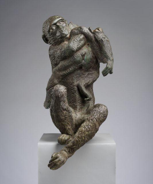 Mother Ape