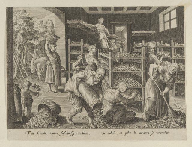 "The Gathering of Mulberry Leaves and the Feeding of the Silkworms, Plate 5 from ""The Introduction of the Silkworm"" [Vermis Sericus]"
