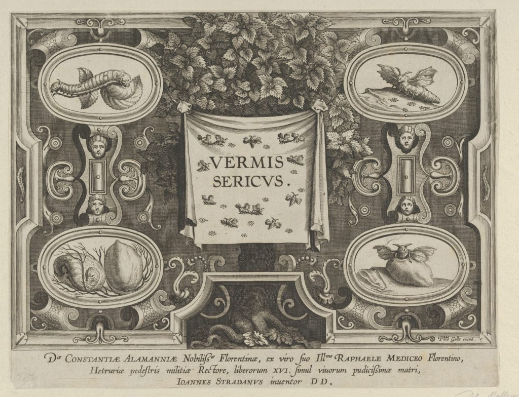 "Title Plate from ""The Introduction of the Silkworm"" [Vermis Sericus]"