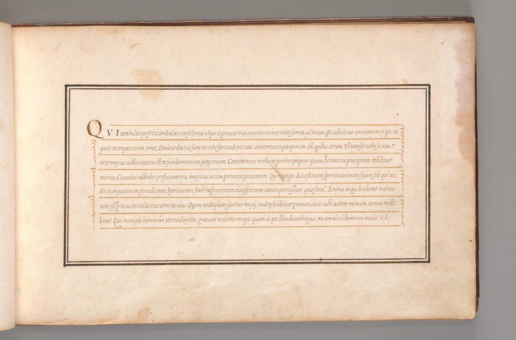 Calligraphic Excersize in Latin (Cursive Script)