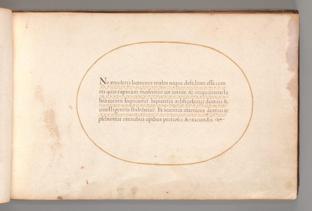 Calligraphic Excersize in Latin