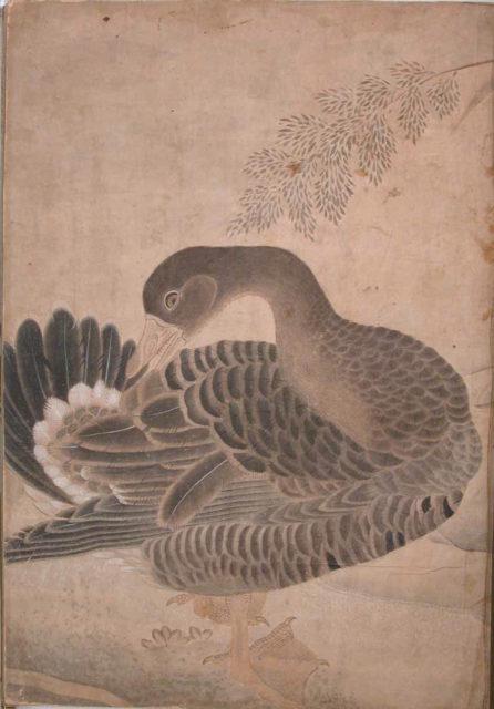 """Goose Preening its Tail"", Folio from the Bellini Album"