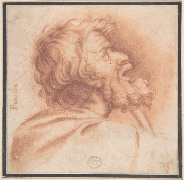 Head of Bearded Old Man Shown in Profile, Looking Up