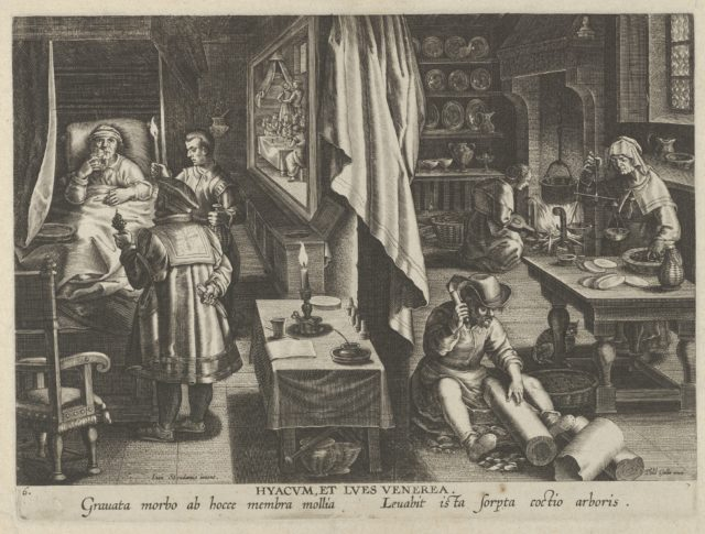 New Inventions of Modern Times [Nova Reperta], The Discovery of Guaicum as a Cure for Veneral Infection, plate 6