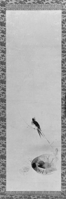 Small Bird on Reed