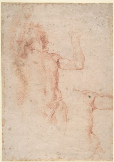 Study of Nude Figure in Front View Looking Upward; Study of Torso and Left Arm
