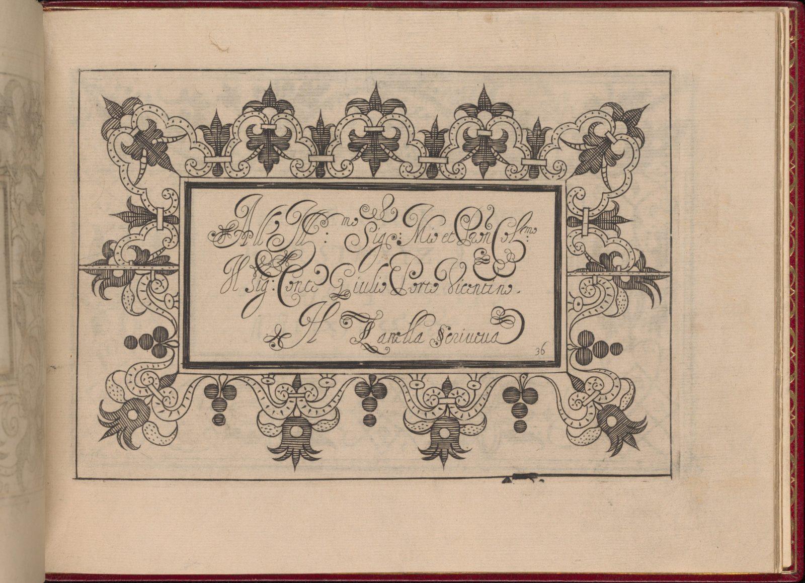 Ghirlanda: Di sei vaghi fiori scielti da piu famosi Giardini d'Italia, page 44 (recto)
