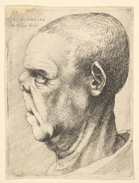 Grotesque old man with flattened nose in profile to left