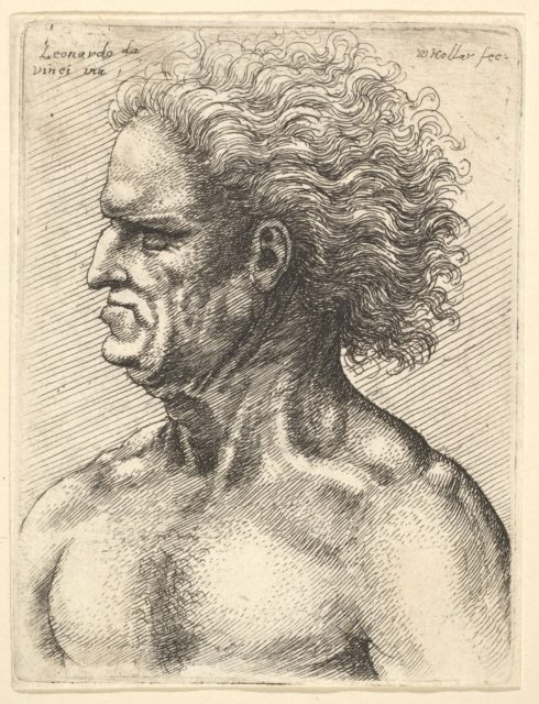 Head of a muscular old man in profile to left with flowing hair