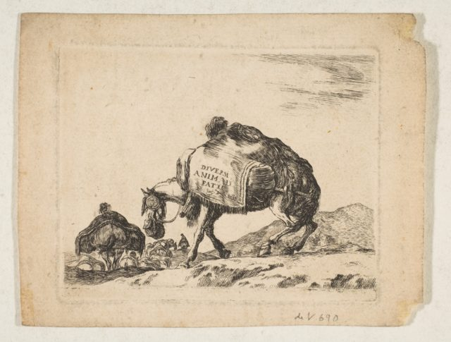 Plate 1: a pack horse, from 'Various animals' (Diversi animali)