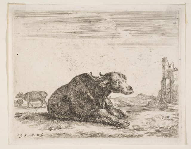 Plate 13: buffalo lying down, from 'Various animals' (Diversi animali)