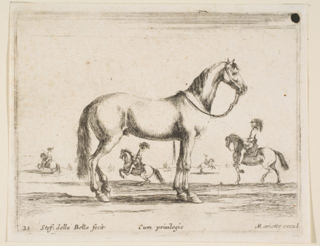 Plate 21: horse, from 'Various animals' (Diversi animali)