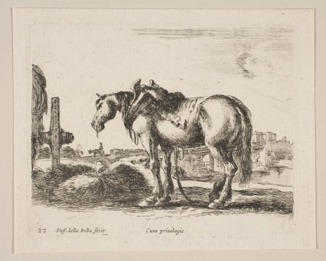 Plate 22: cart horse, from 'Various animals' (Diversi animali)